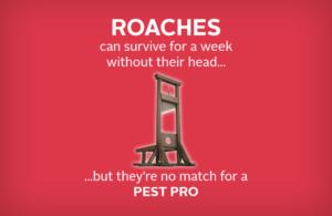 Pest Pro
