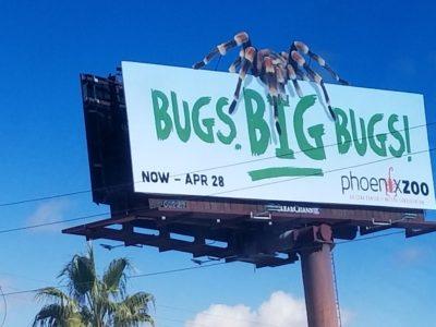 Bugs BIG Bugs