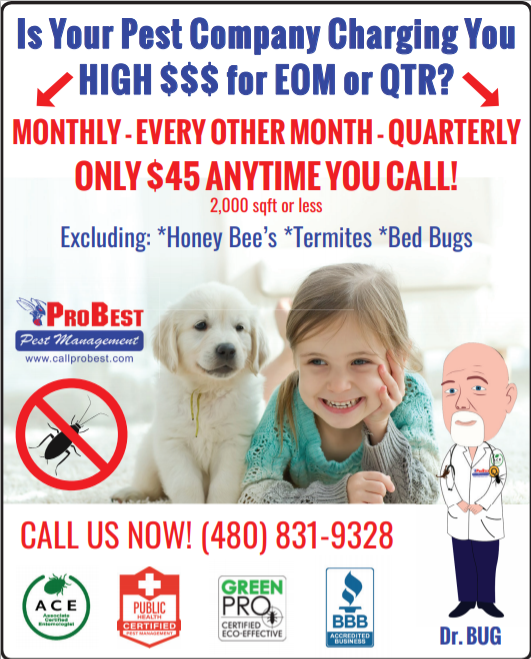 Pest Control Pricing