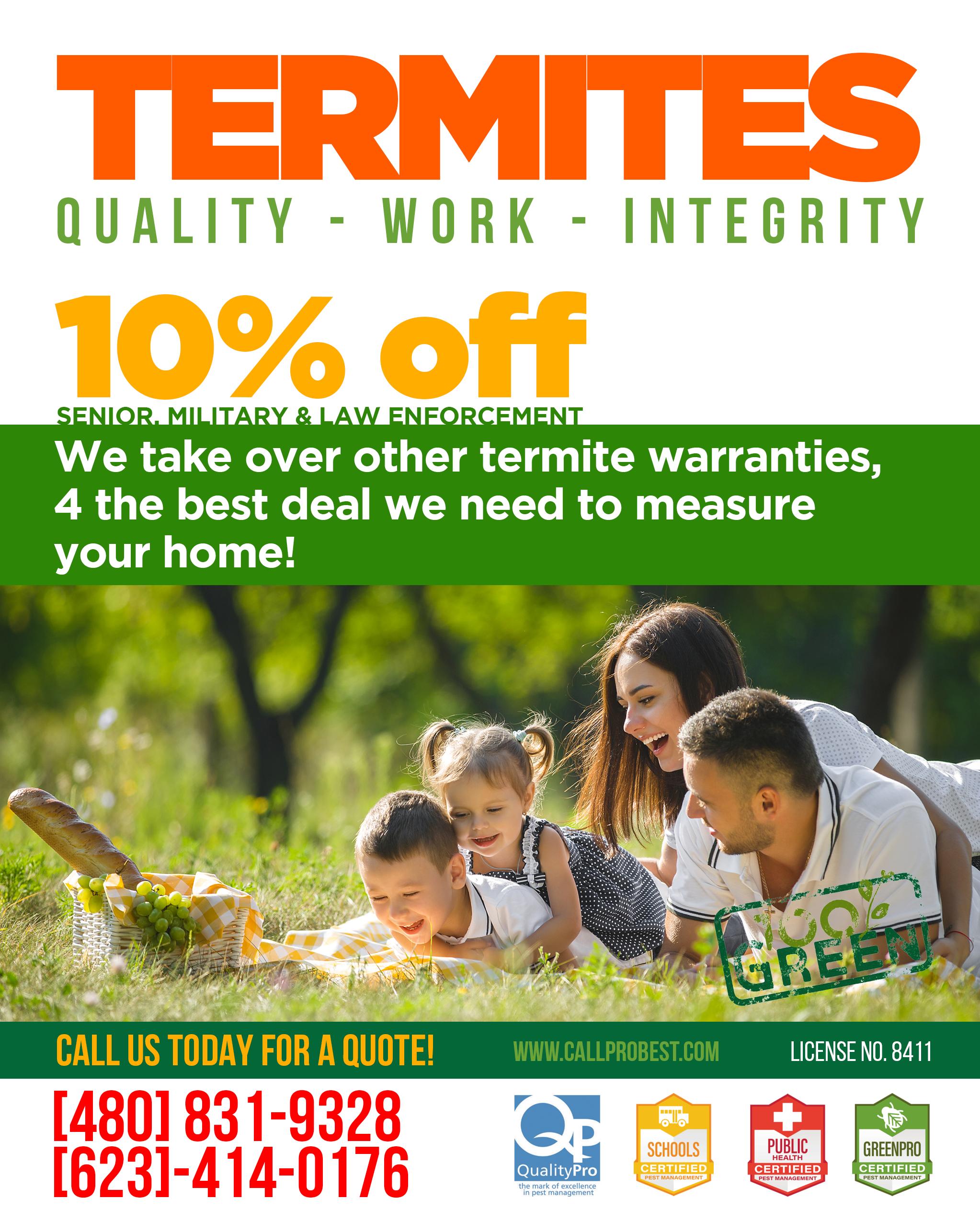 Termite work